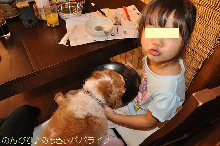 tateyama201607085.jpg
