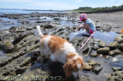 tateyama201607090.jpg