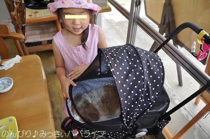 tateyama201607116.jpg