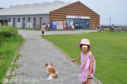 tateyama201607124.jpg