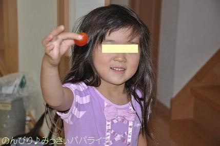 tomatoshukaku201602.jpg