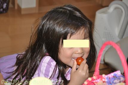 tomatoshukaku201604.jpg