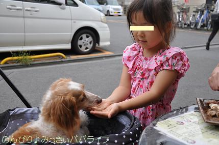 yakitori20160706.jpg