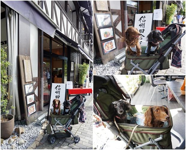 20160910karuizawa1.jpg