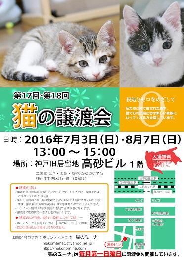 猫の譲渡会_7月_8月 - コピー
