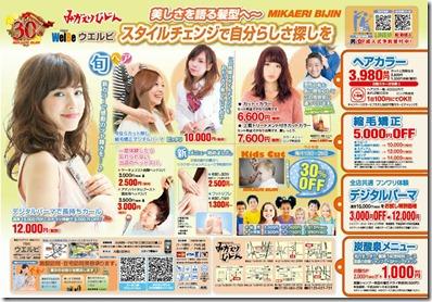 20169レギュラー広告A4