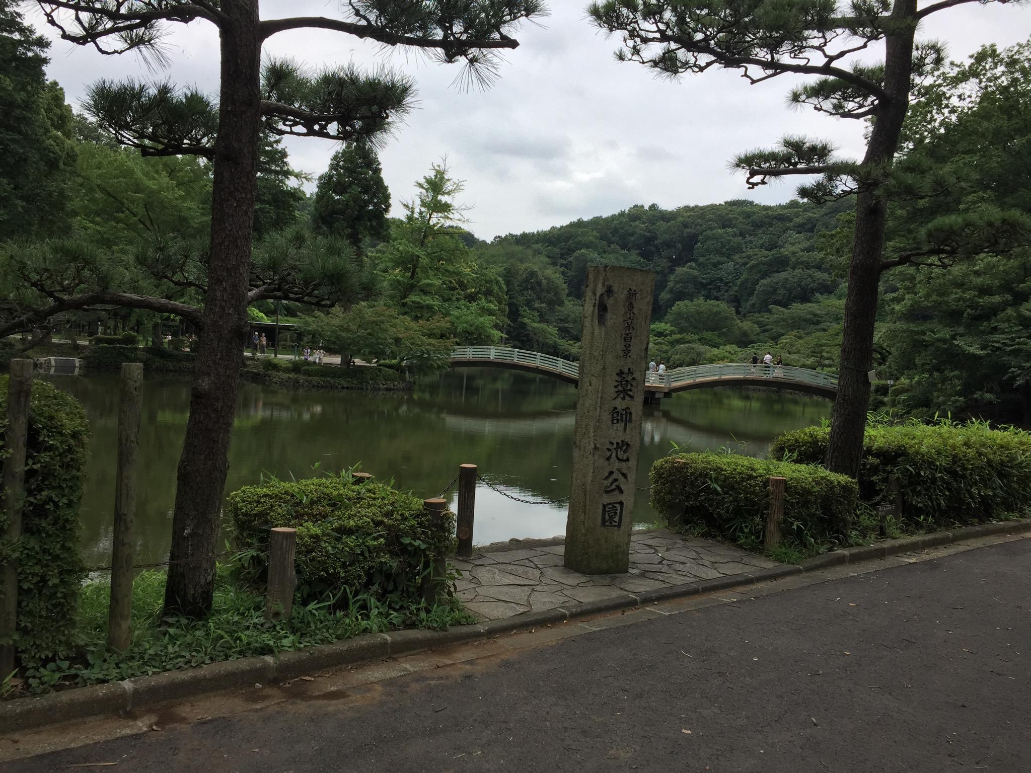 町田市薬師池公園2