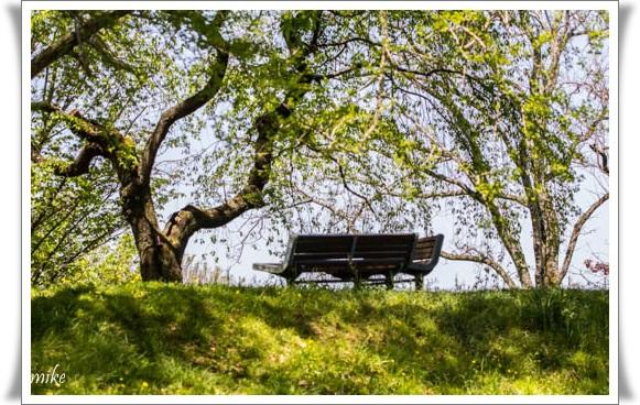 植物園6042010