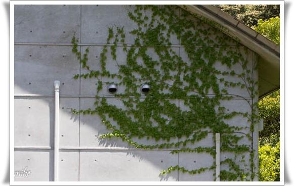 植物園604209
