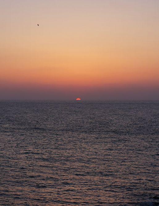 GWカメラ_3240