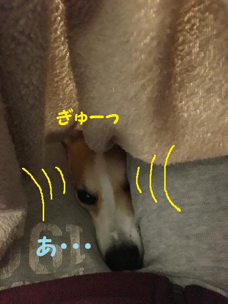 ねぇまま6