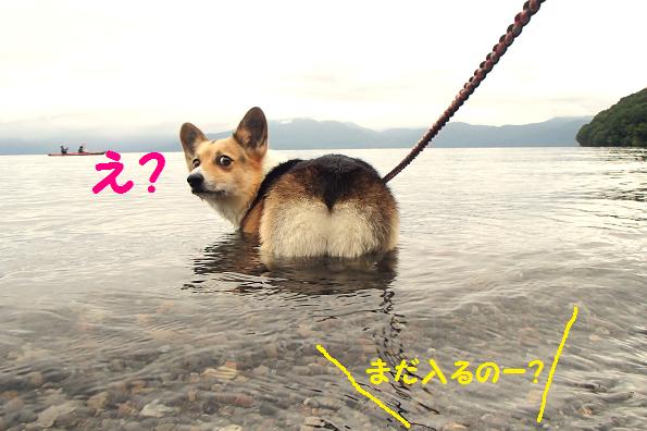支笏湖20