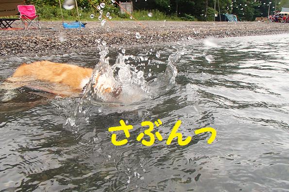 支笏湖24