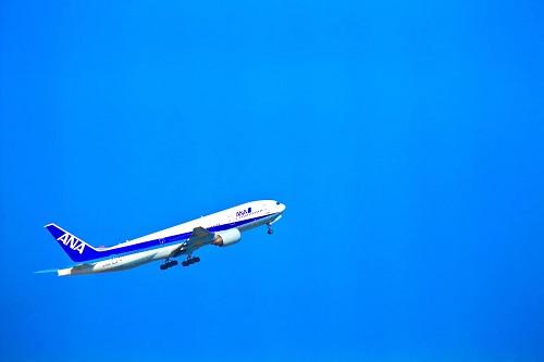 ANA飛翔
