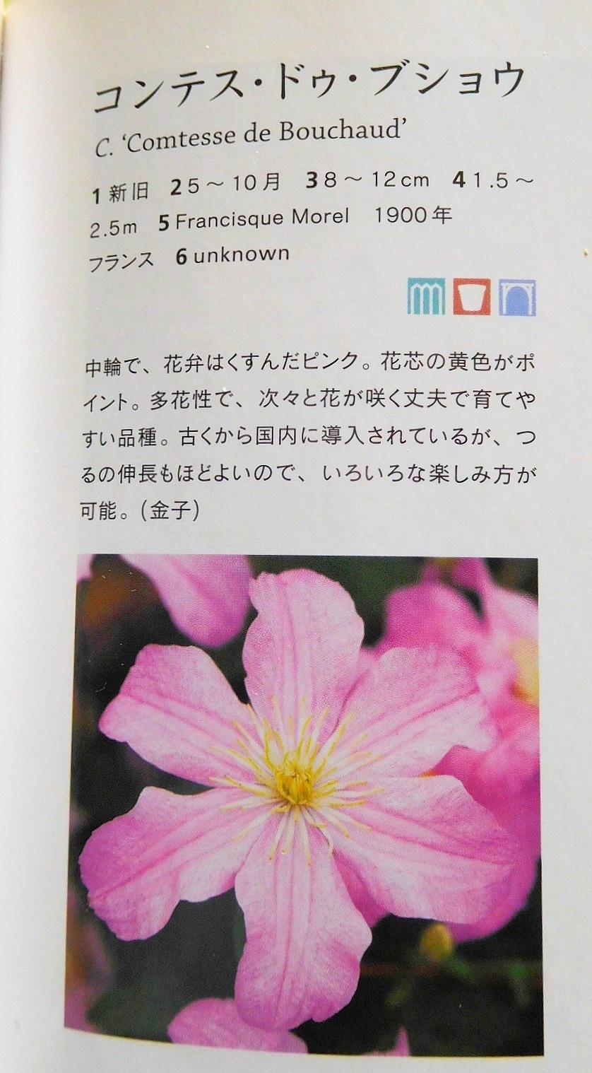DSCN3869-01.jpg