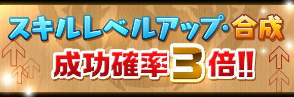 skill_seikou3x_20161013173527e8e.jpg