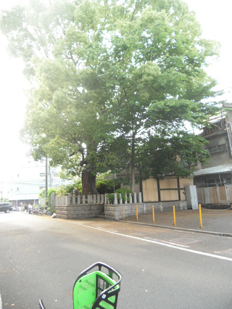 2 武野 紹鴎(たけの じょうおう)の屋敷跡の一部