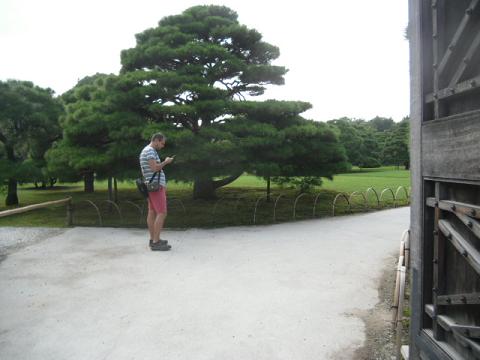 B  庭園内部を映す観光客