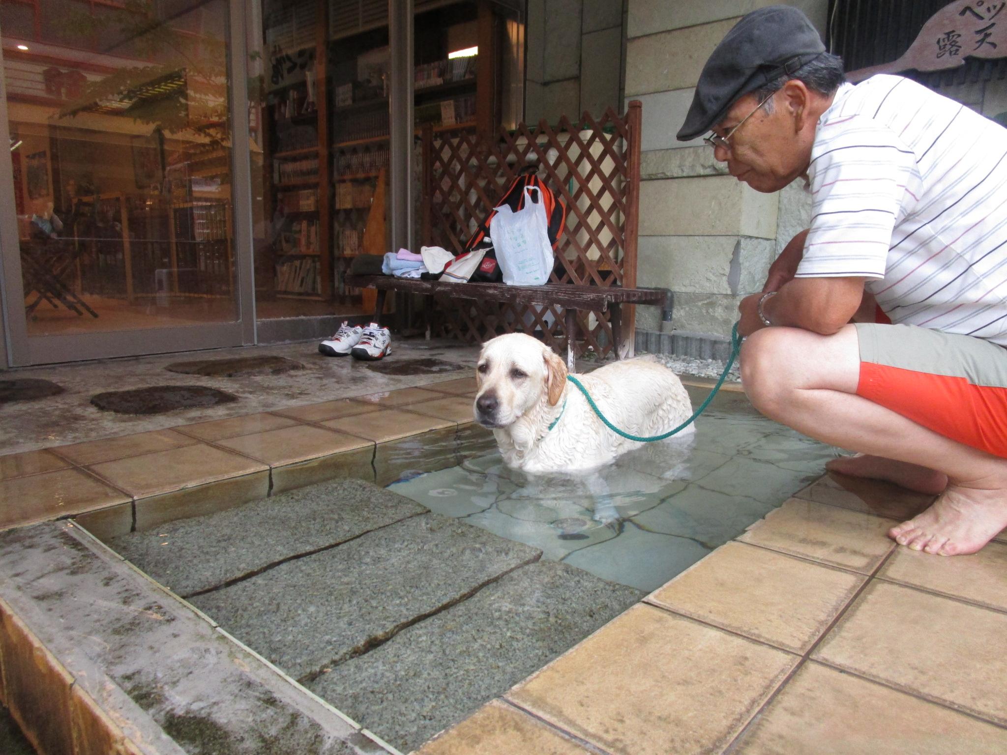 Wan用の温泉
