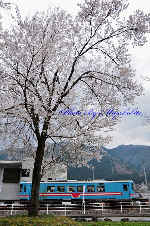 Photo By MiyakobitoDSC_1716