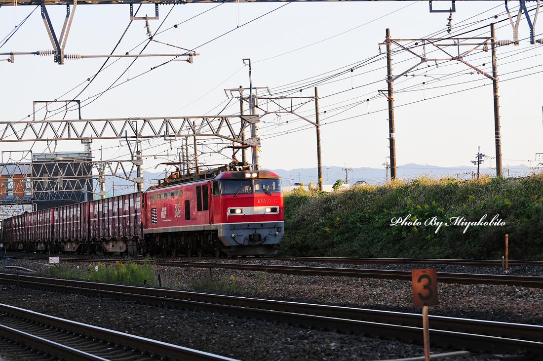 DSC_0467.jpg