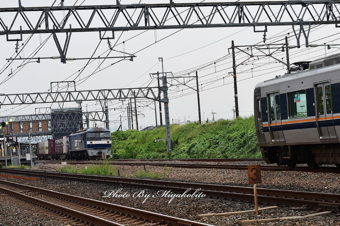 DSC_1302.jpg