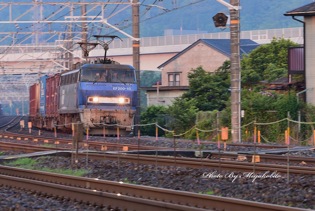 DSC_9219.jpg