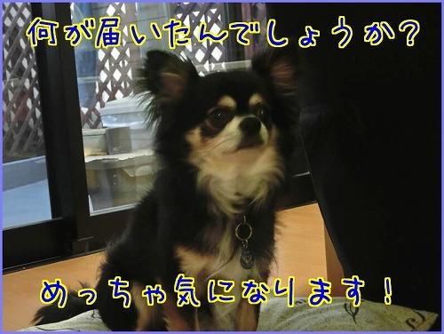 20160602AR (10)