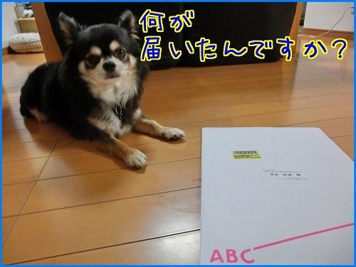 20160713CD (4)