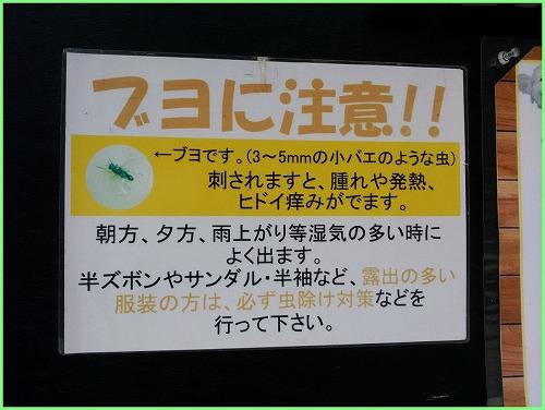 20160813AD (2)