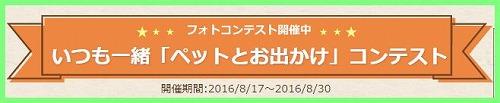 20160826CO4.jpg