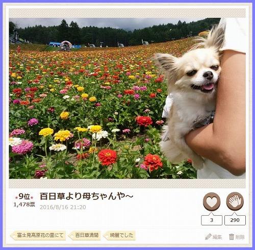 20160830PC1.jpg