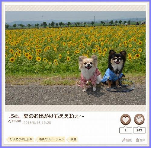 20160830PC2.jpg
