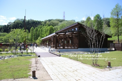 P59A0113.jpg