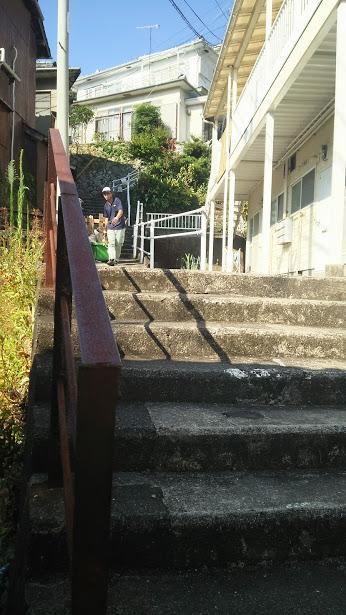 sakamara29.jpg