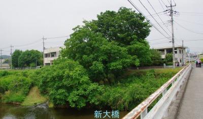 ☆IMGP5220