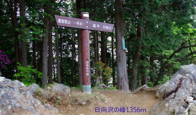 ☆IMGP4877
