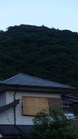 20160730狩野川花火005