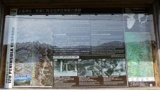 20160514旧東海道原生の森109