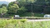 20160514旧東海道原生の森121