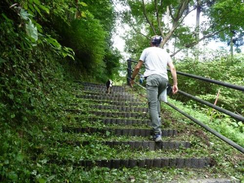 ダム散歩3