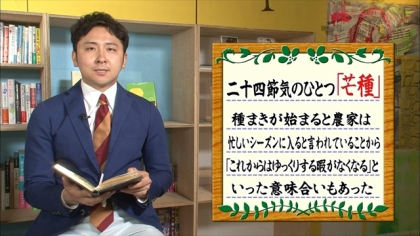 160605朝ダネ 紺野あさ美 (3)