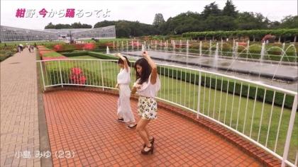 160623紺野、今から踊るってよ 紺野あさ美 (2)