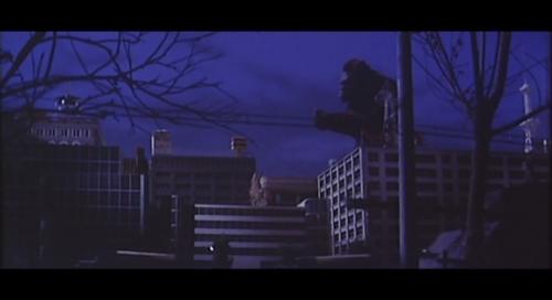 夜の街を往くコング巨影