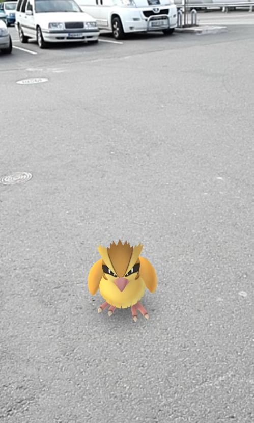 Pokemon GO ポケモン GO フィンランド ポッポ