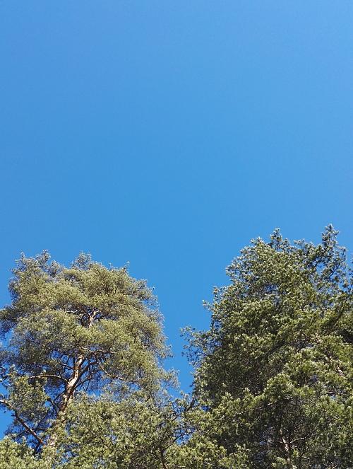 フィンランド 春 青空 Blue sky Finland