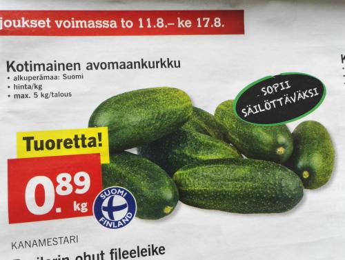 フィンランド ピクルス用きゅうり Avomaankurkku