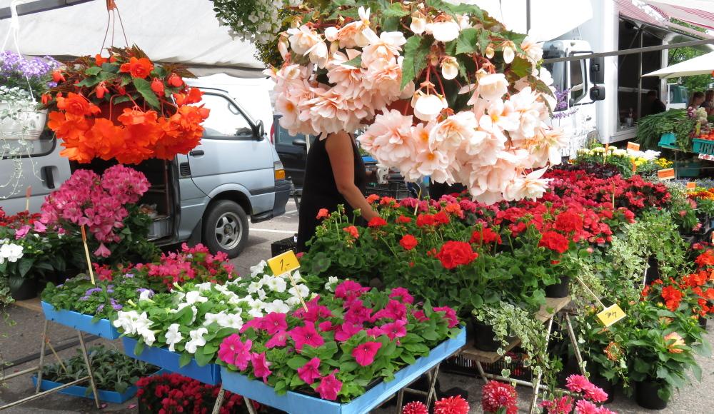 Juhannus フィンランド 夏至祭マーケット 花屋
