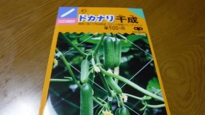 2016.5.14菜園