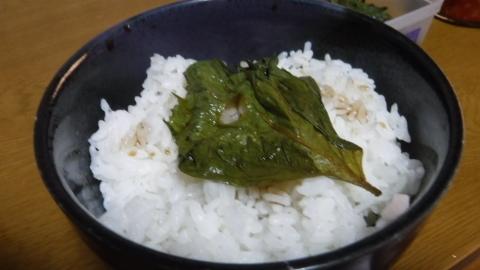 2016.8.26食事7